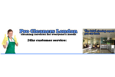 Pro Cleaners London