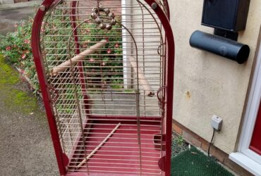 Best Bird cage for you