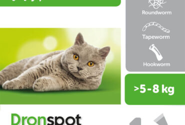 Dronspot Large Cat Spot-on Worming Solution 1 Pipette By Dronspot