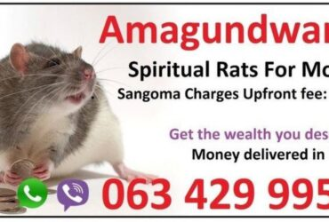 +27634299958 Strong money spells in Kimberley | Durban