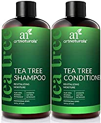 Tea-Tree-Oil Shampoo and Conditioner