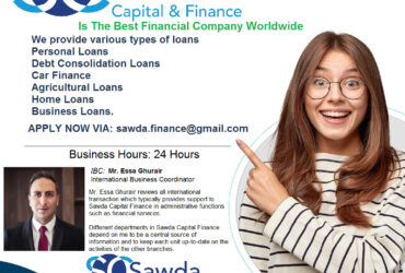 LOANS TO INDIVIDUALS AND COMPANIES