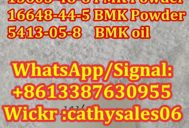China Supplier CAS NO.5413-05-8 new bmk glycidate pmk powder hot sales in Holland and UK