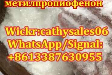bk4 2-Bromo-4-Methylpropiophenone CAS 1451-82-7 with Reasonable Price and Fast Delivery