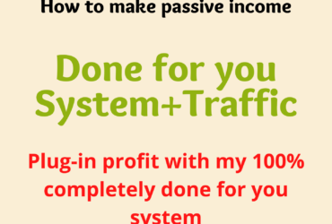 Done for you System+Traffic