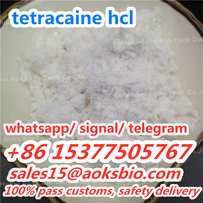 China factory outlet CAS 94-24-6 tetracaine powder, China tetracaine supplier